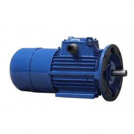 Electric motor with brake 80B-4 0.75 kW 1500 rpm